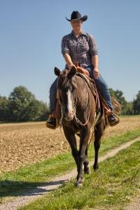 , Paarden en letselschade